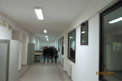 IMG_0353